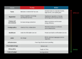 trump vs biden differences_0.png (1280×924)
