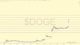 slopechart_$DOGE.jpg
