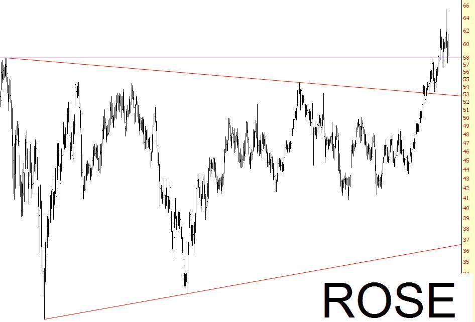 1104-ROSE