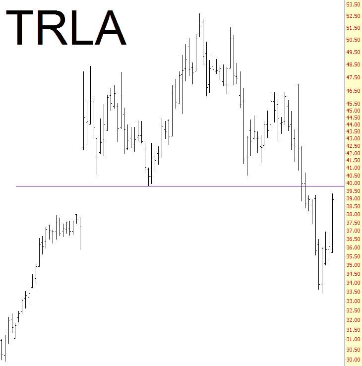 1113-trla
