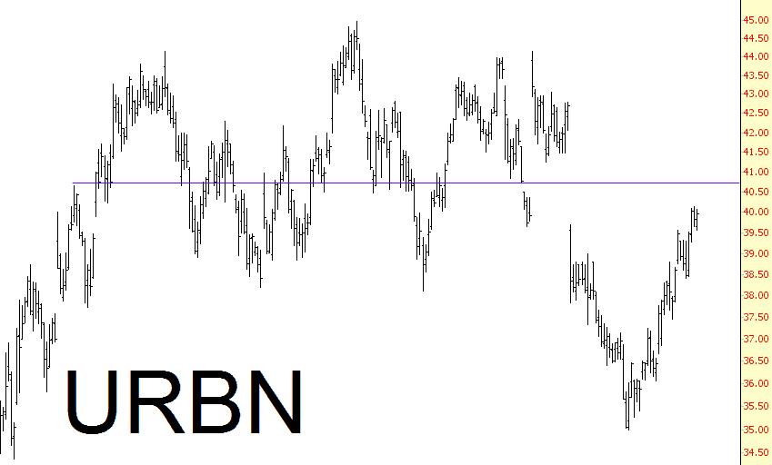 1113-urbn