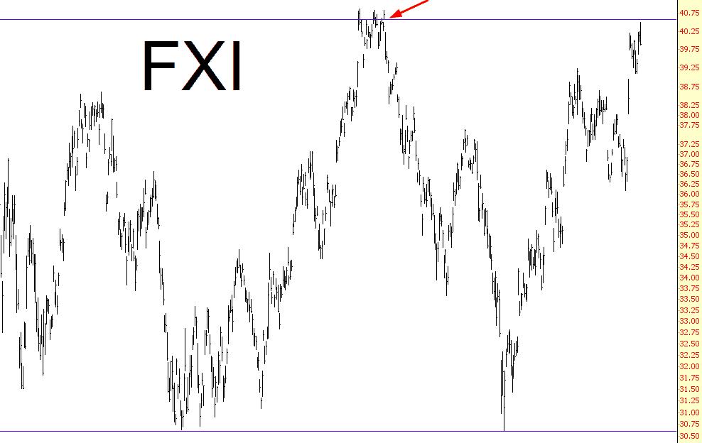 1202-fxi