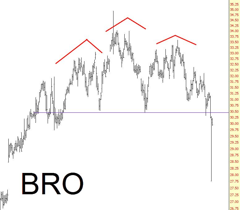 1213-bro