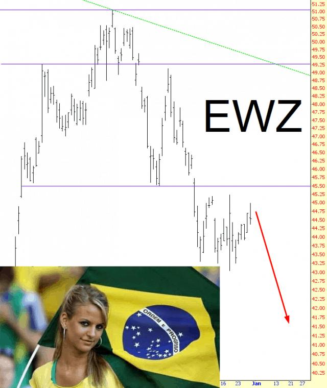 1230-ewz
