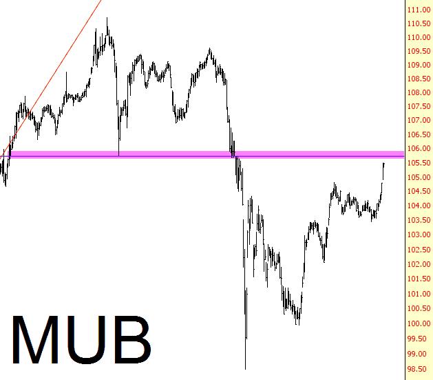 0113-mub