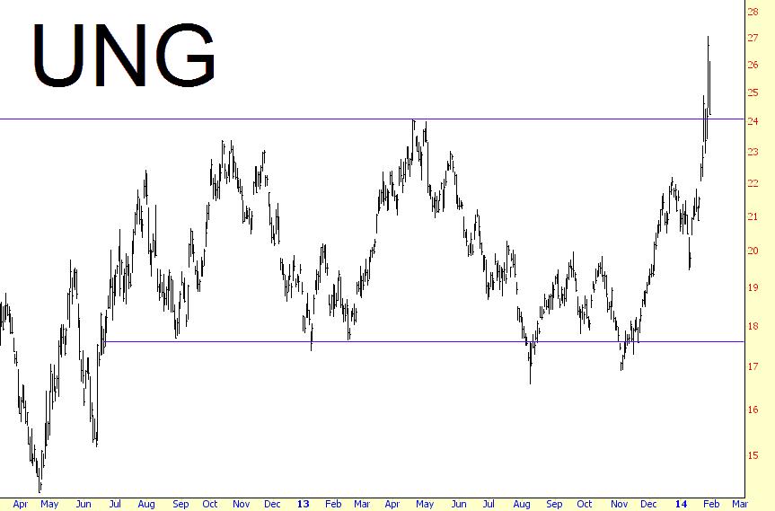 0130-ung
