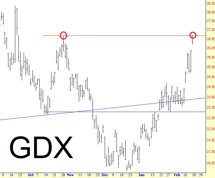 0214-GDX