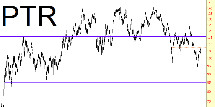 0305-PTR