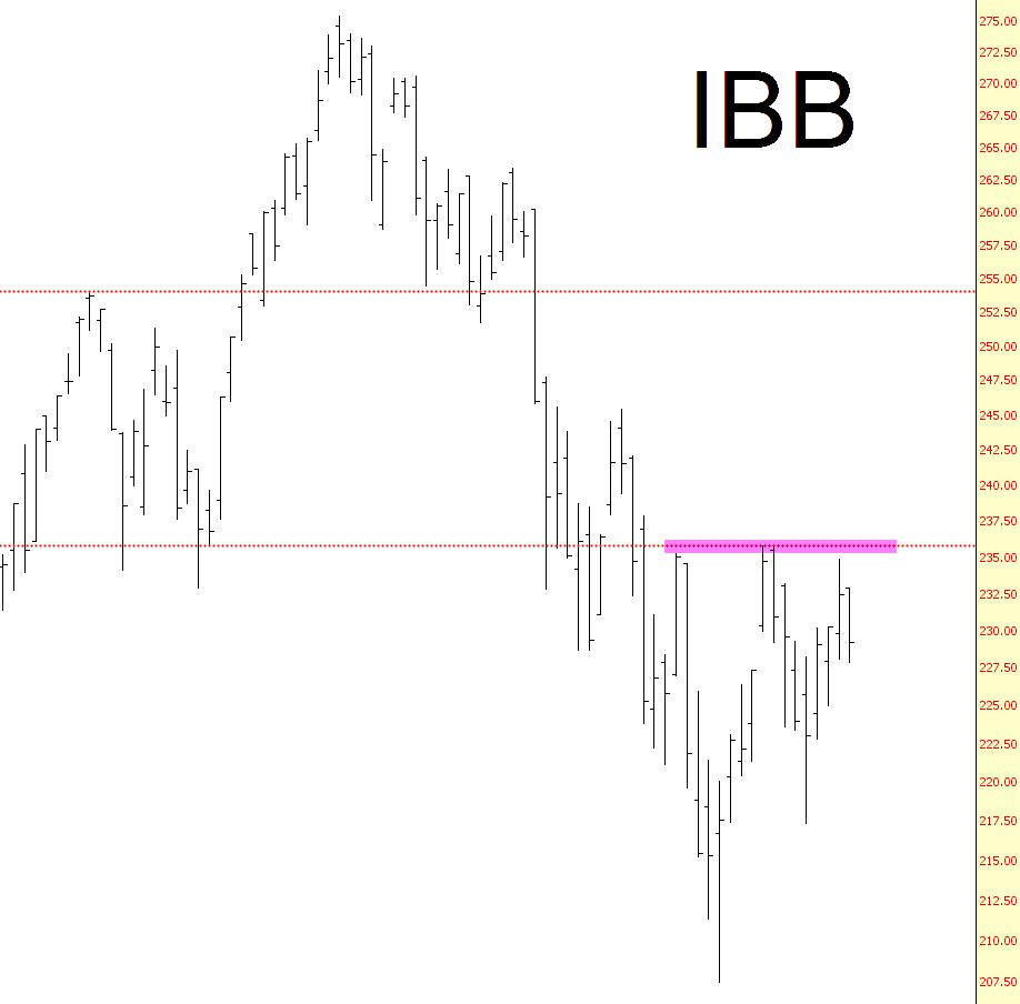 0502-ibb
