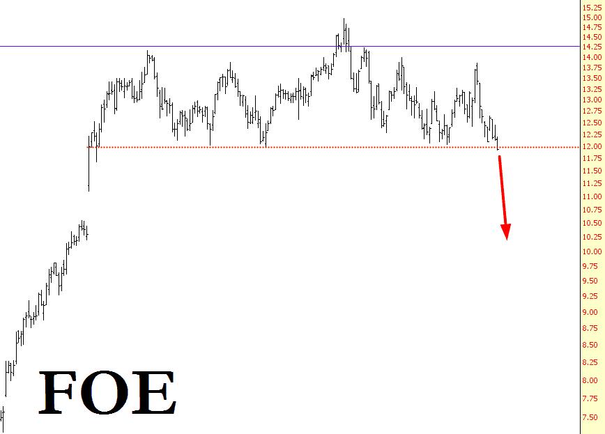 0618-FOE
