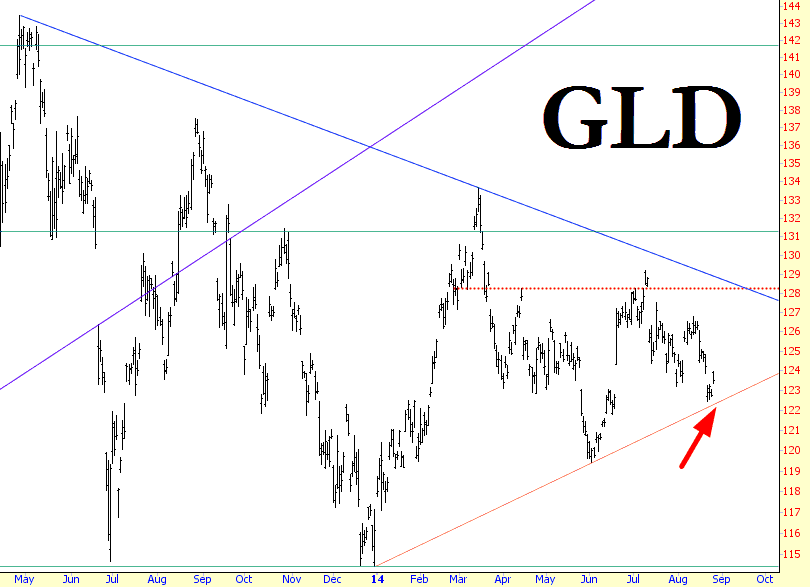 0826-gld