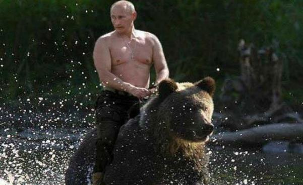 Vladimir Putin rides a bear action figure - Democratic ... Vladimir Putin Funny Bear