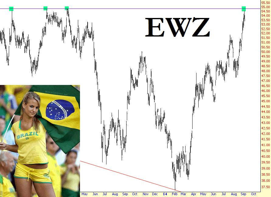 0904-ewz