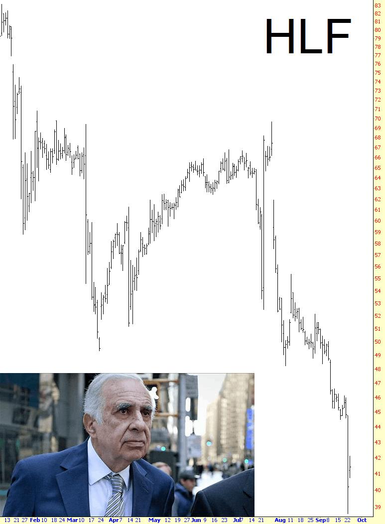 0923-hlf