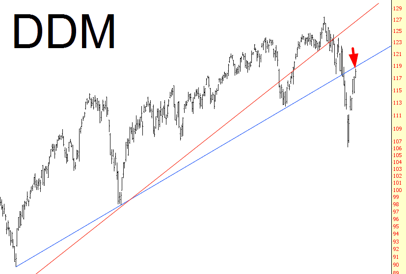1023-DDM