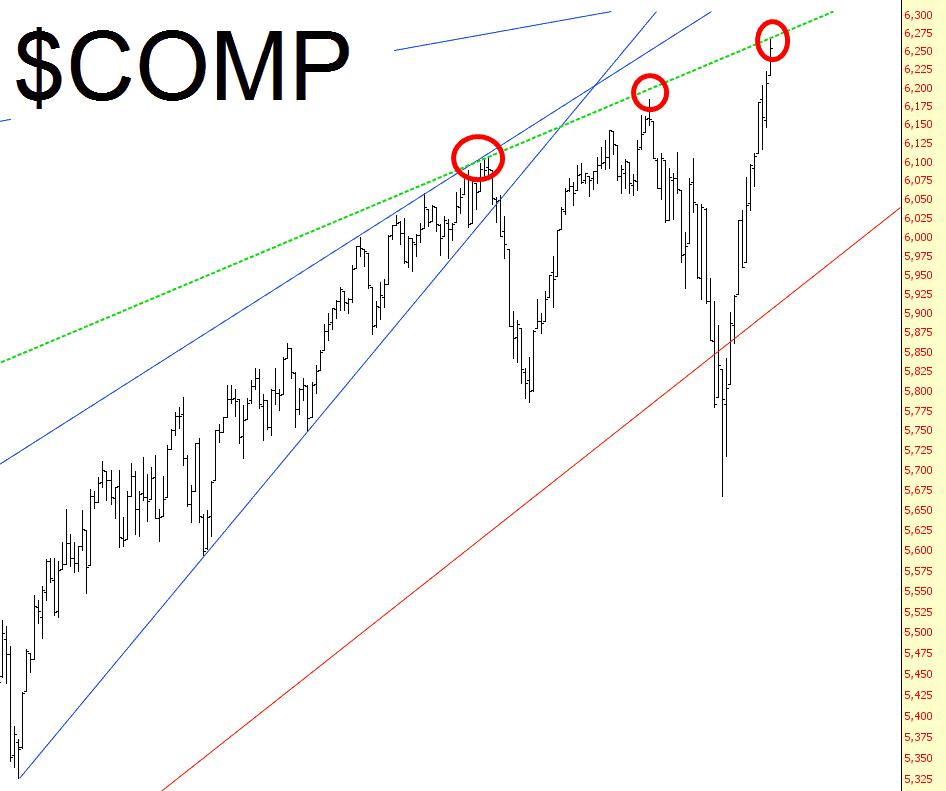 1031-comp