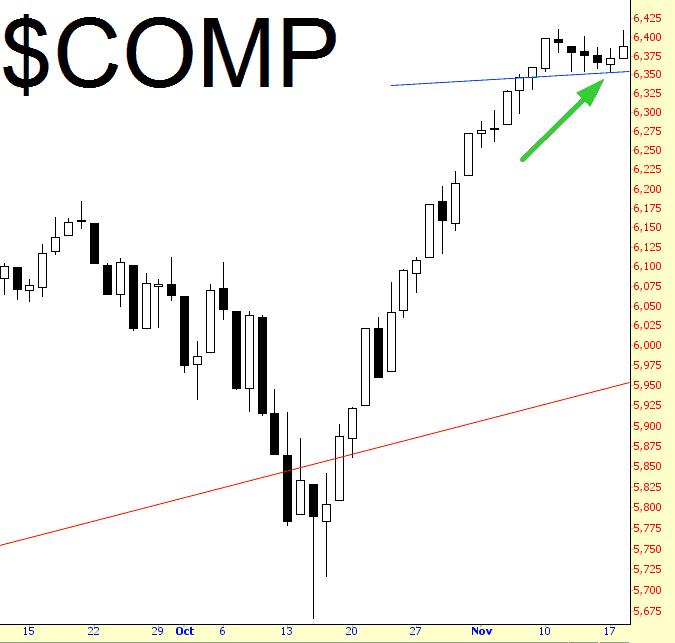 1118-comp