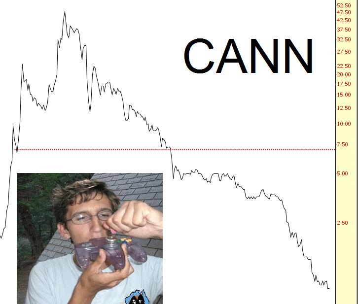 1231-CANN