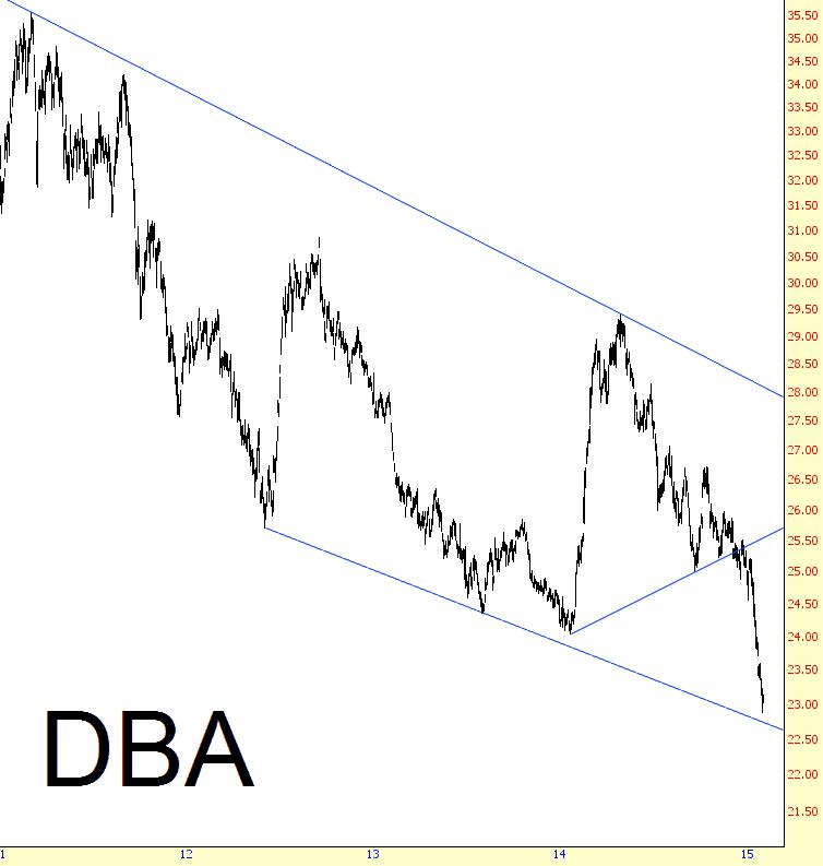 0203-dba