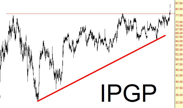 0209-ipgp