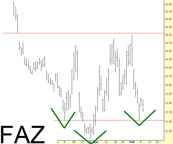0210-FAZ