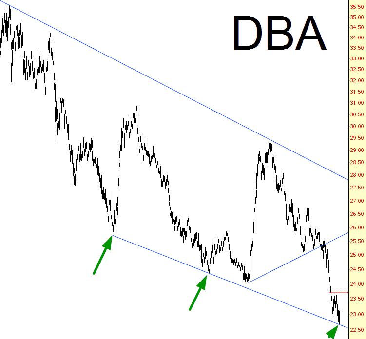 0303-dba