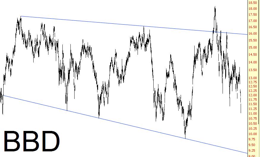 0309-bbd