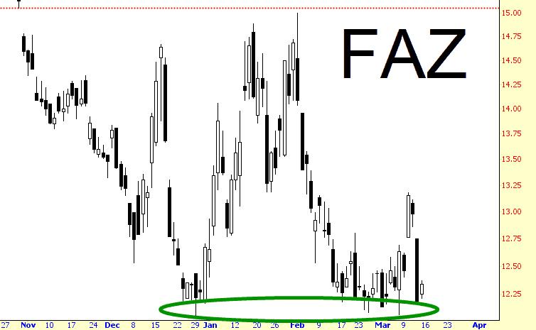 0313-faz