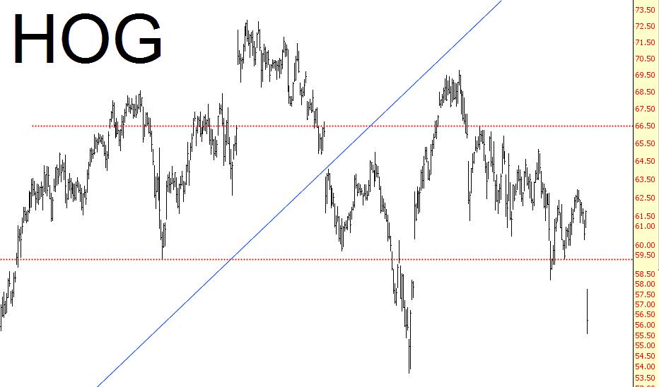 0421-hog