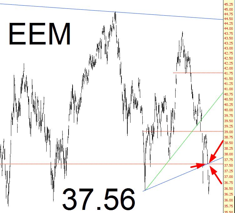 0729-eem