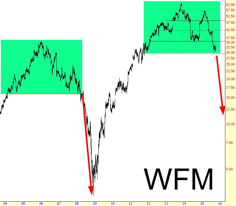 1003-WFM
