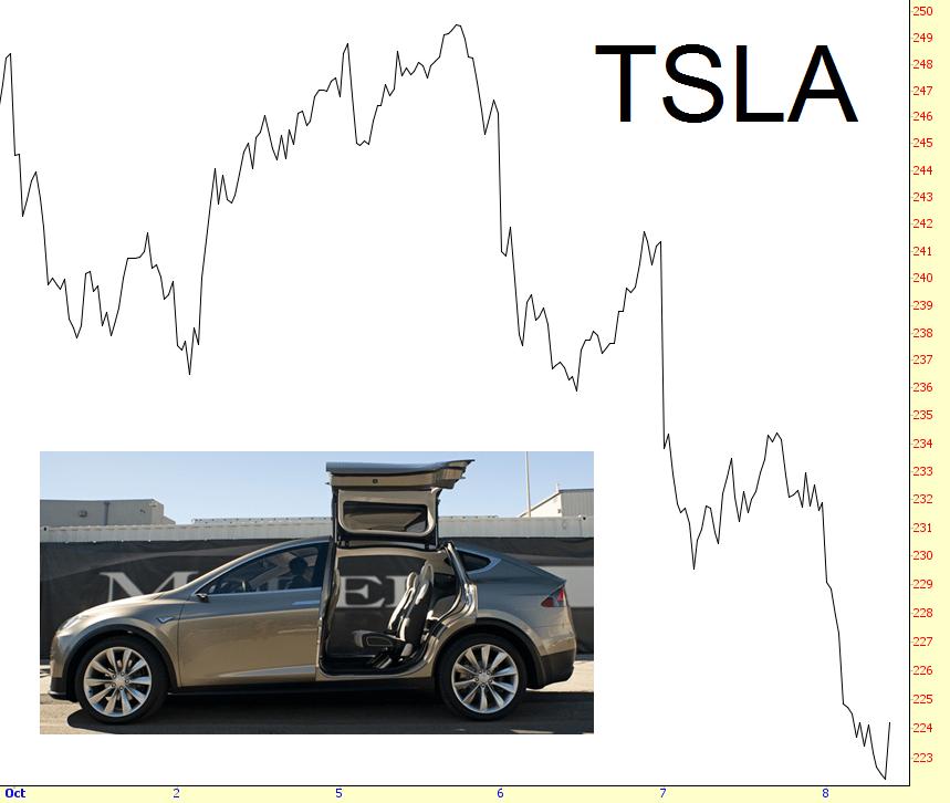 1008-tsla