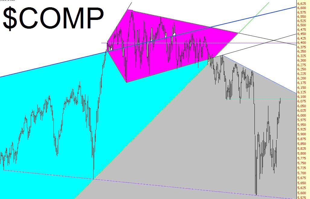 1009-comp