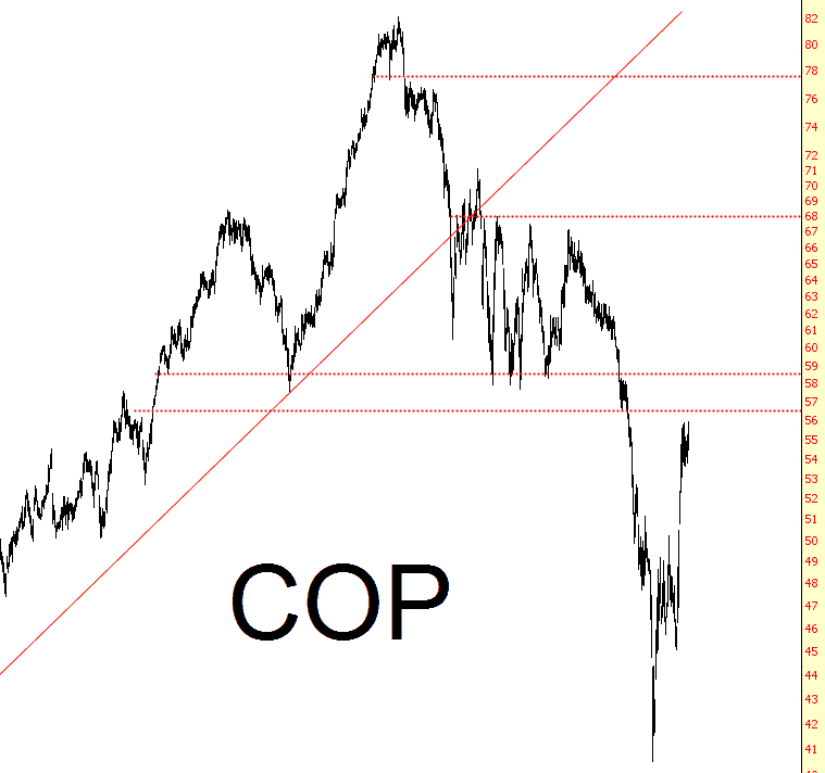 1017-cop