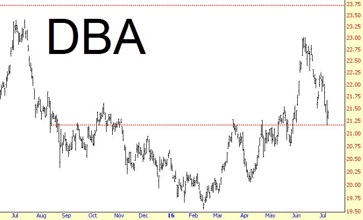 0709-dba
