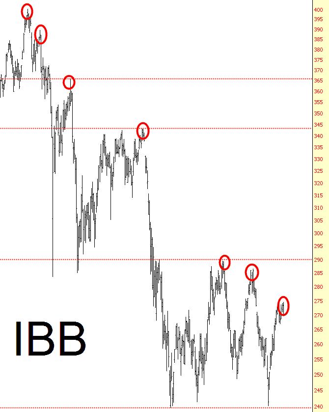 0719-IBB