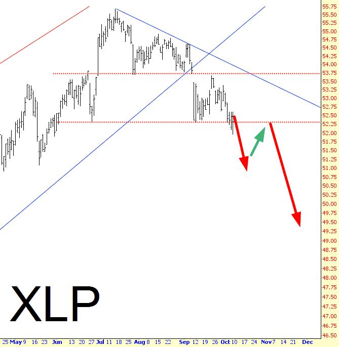 1008-XLP