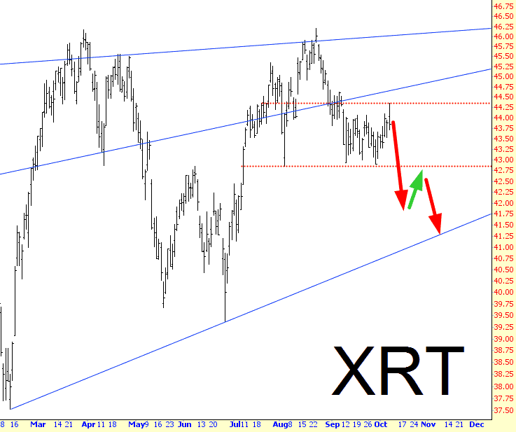 1008-XRT