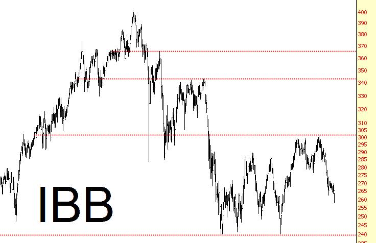 1027-IBB