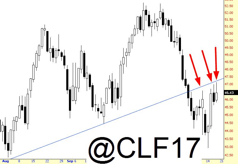 11117-crude