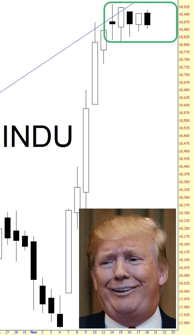1118-indu
