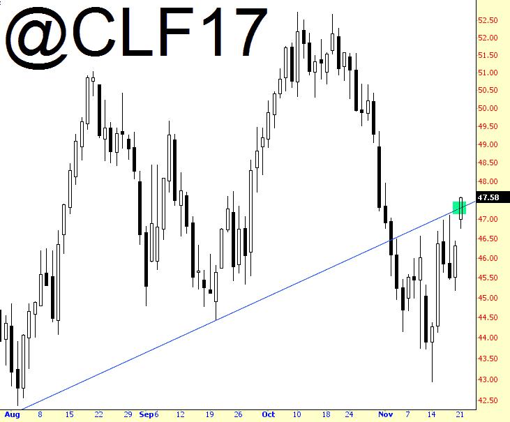 1121-clf