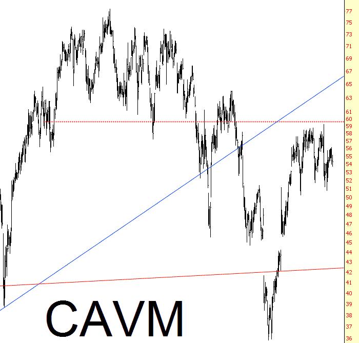 1122-cavm