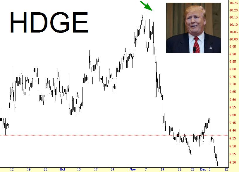 1207-HDGE