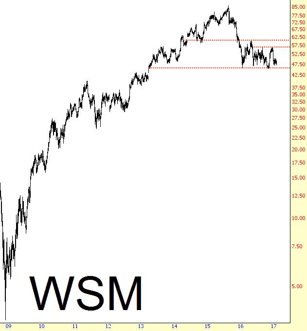 0128-WSM