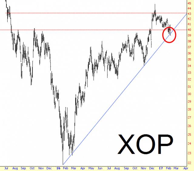 0207-xop
