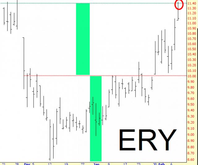 0208-ERY