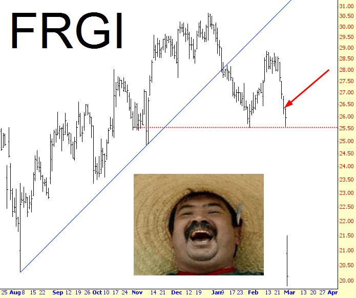 0228-FRGI