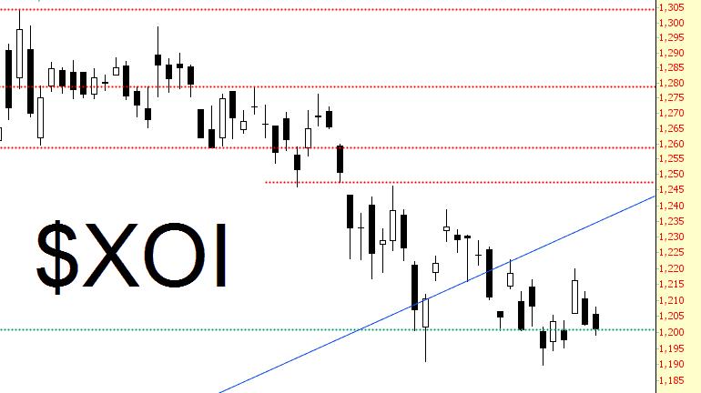 0304-OILX