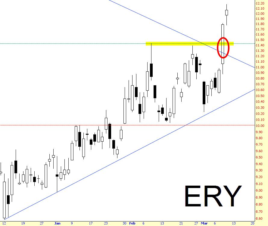 0309-ERY